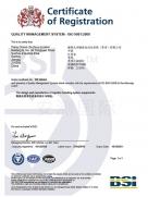 德利物流-BSI颁发